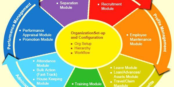 HR management System Solution-HRMS-Human resource (HR)software-Kenya